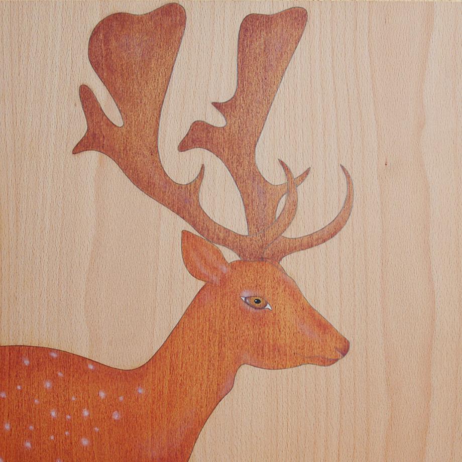 """my tiny deer"""
